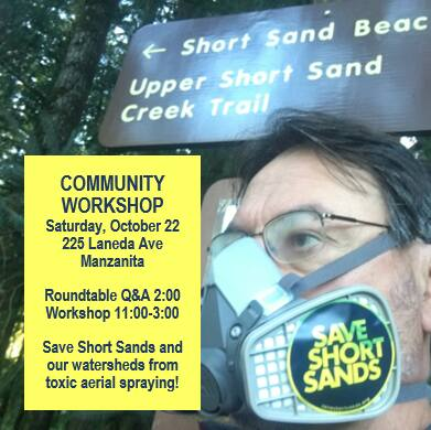 Short Sands Community Workshop