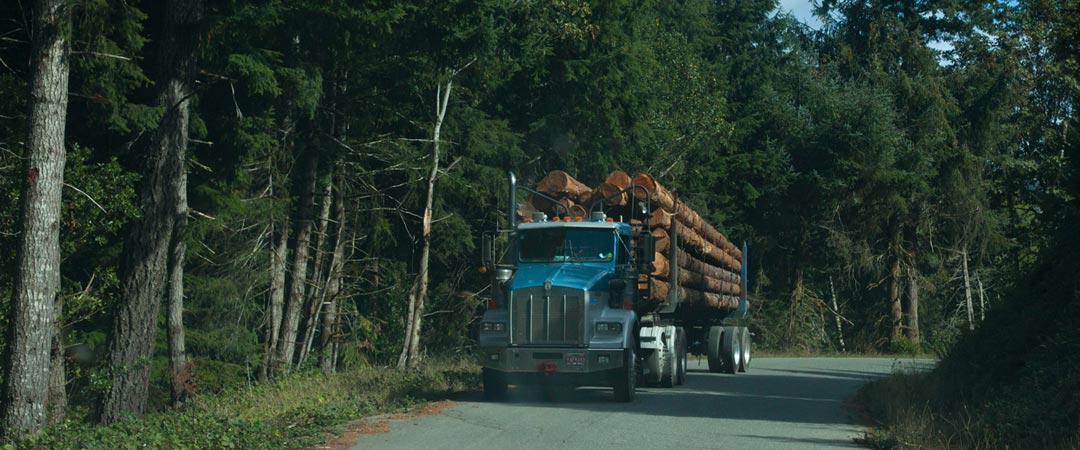 Logging Truck - Gold Beach